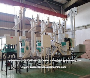 Paddy mill brown rice milling machine for sale