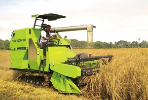 Rice/Grain combine Harvester Agricultural machinery