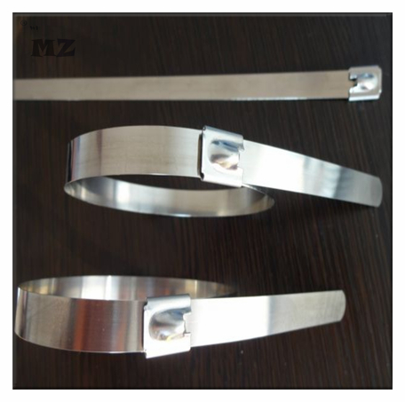 Stainless Steel Cable Tie/Cable Ties