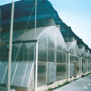 The Chepest Agricultural Plastic Film Greenhouse