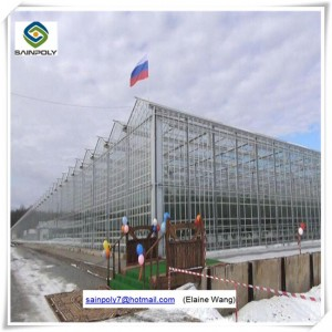 Venlo PC Sheet Greenhouse with China Factory Price for Tomato