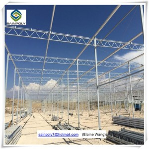 Venlo PC Sheet Hydroponic System Greenhouse for Tomato