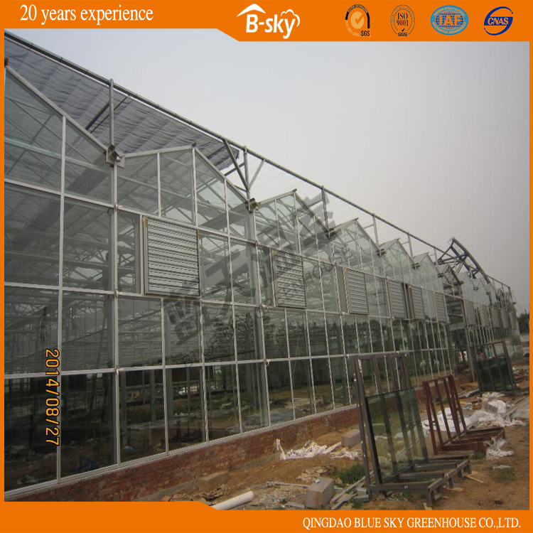 Good Appearance Long Life-Span Greenhouse