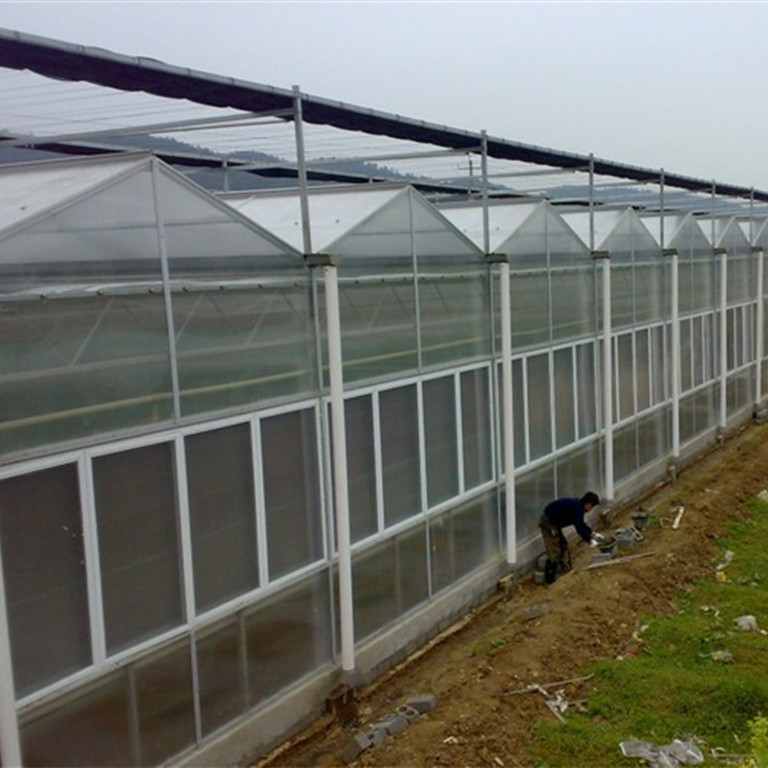 Venlo PC Greenhouse Fp108g40