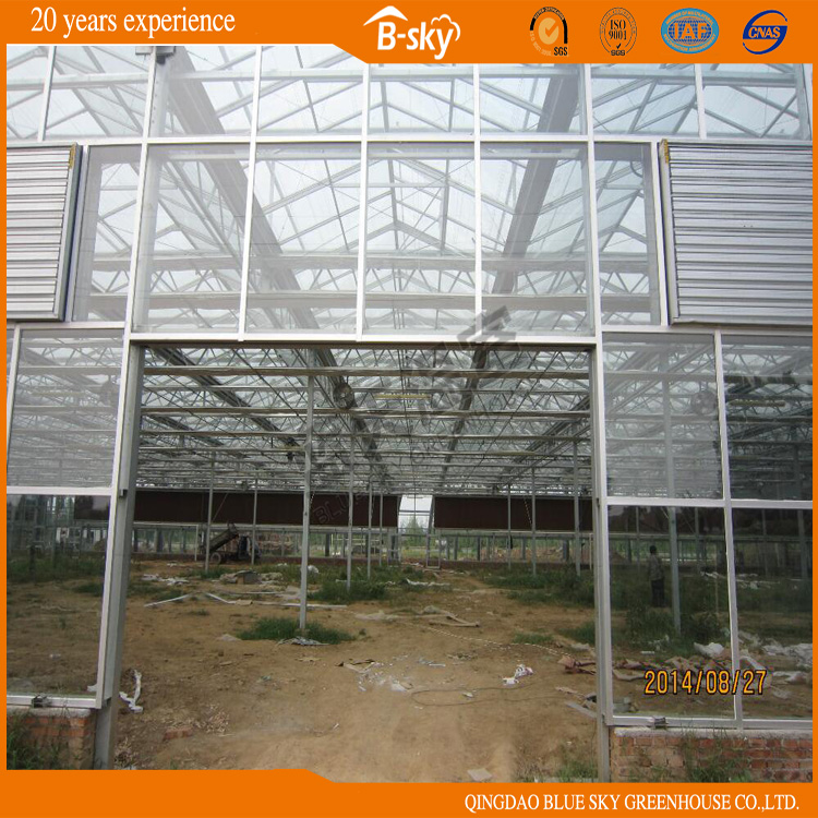 Beautiful Appearance Long Life-Span Glass Greenhouse