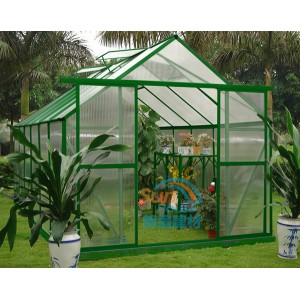 Clear Hollow Polycarbonate Sheet Greenhouse